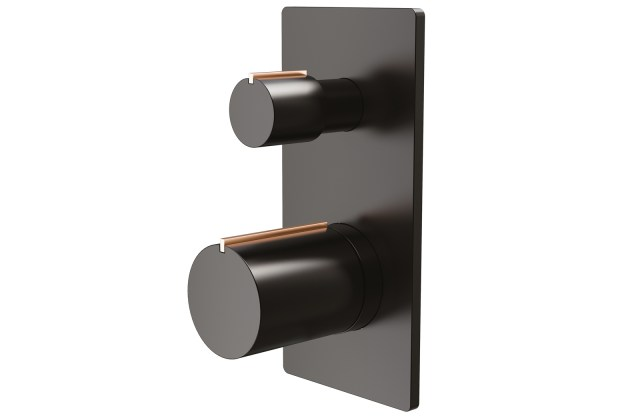 Concealed Diverter with Trim, Handle